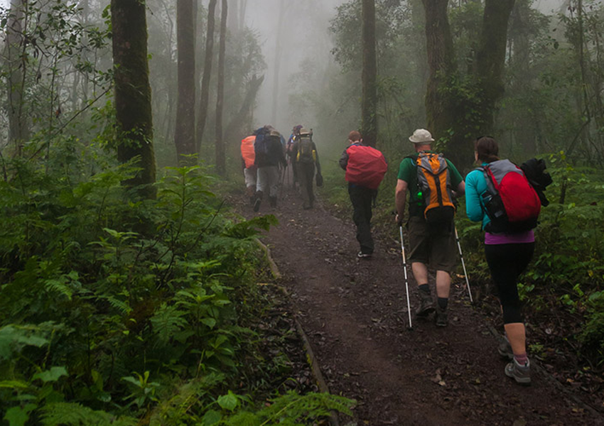 7 Days 6 Nights Kilimanjaro Climb – Lemosho Route